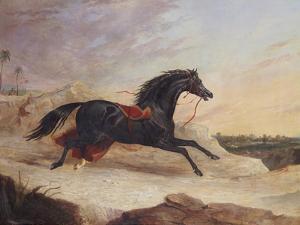 Arabs Chasing a Loose Arab Horse in an Eastern Landscape by John Frederick Herring I