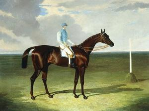 Mssrs. Ridsdale's and Gully's St. Giles with William Scott Up, 1832 by John Frederick Herring I