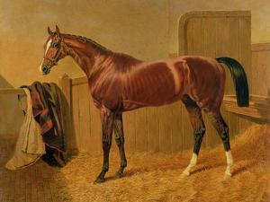 Orlando', Winner of the Derby in 1844 by John Frederick Herring I