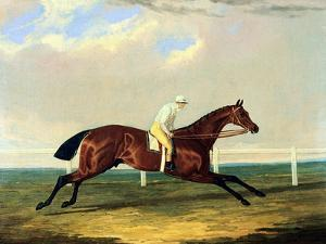 'tarrare' Ridden by George Nelson by John Frederick Herring I