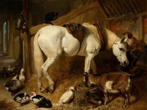 The Midday Meal, 1850 by John Frederick Herring I