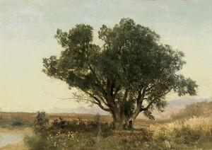 The Front Range, Colorado by John Frederick Kensett