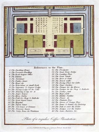 Plan of a Regular Coffee Plantation, 1813
