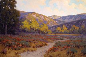 Evening Santa Barbara by John Gamble