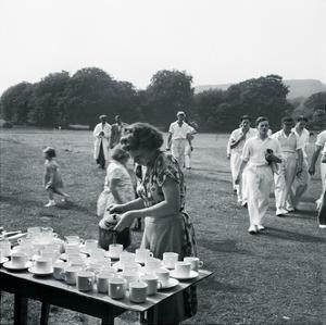 Cricket Near Lewes Sussex by John Gay