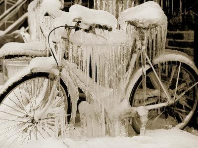Ice Covered Bicycle, Wisconsin