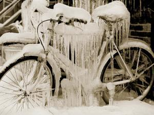 Ice Covered Bicycle, Wisconsin by John Glembin