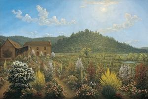 A View of the Artist's House and Garden, in Mills Plains, Van Diemen's Land, 1835 by John Glover