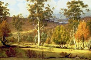 Natives in the Eucalypt Forest on Mills Plains, Patterdale Farm by John Glover