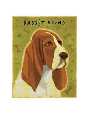 Basset Hound by John Golden