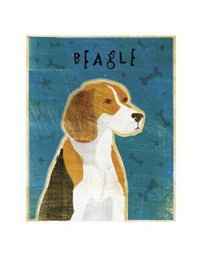 Beagle by John Golden
