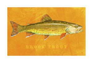 Brook Trout by John Golden
