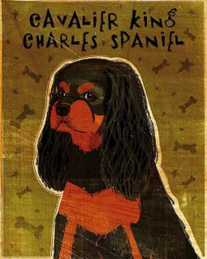 Cavalier King Charles (black and tan) by John Golden