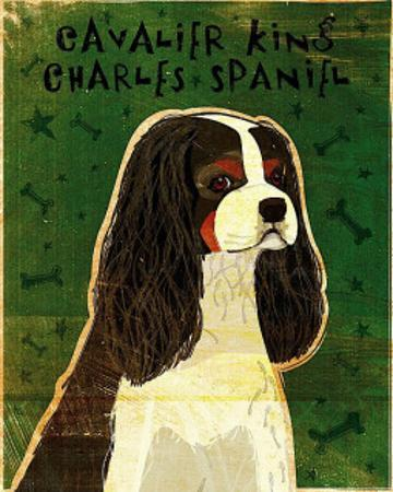 Cavalier King Charles (tri-color) by John Golden