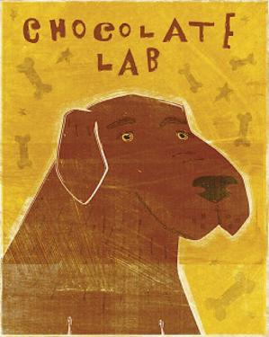 Chocolate Lab by John Golden