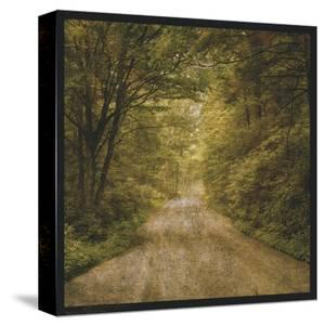 Flannery Fork Road No. 1 by John Golden