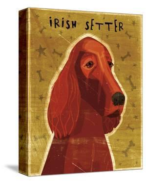 Irish Setter by John Golden