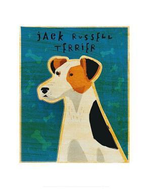 Jack Russell Terrier by John Golden