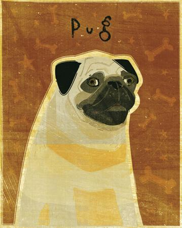 Pug by John Golden