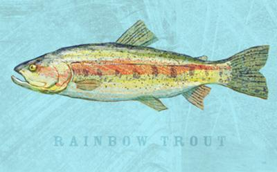 Rainbow Trout by John Golden