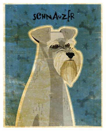 Schnauzer by John Golden