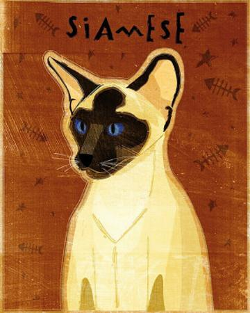 Siamese by John Golden
