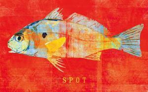 Spot by John Golden