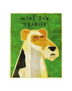 Wire Fox Terrier by John Golden