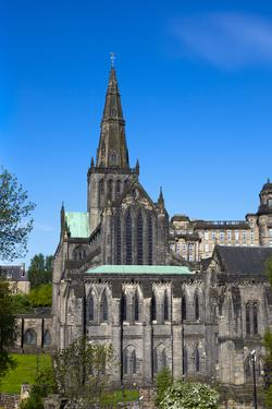 Glasgow Cathedral, Glasgow, Scotland, United Kingdom, Europe by John Guidi