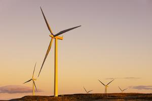 Wind turbines at sunset, Whitelee Wind Farm, East Renfrewshire, Scotland, United Kingdom, Europe by John Guidi