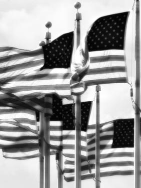 Flags 2 by John Gusky