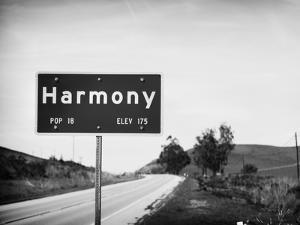 Harmony by John Gusky