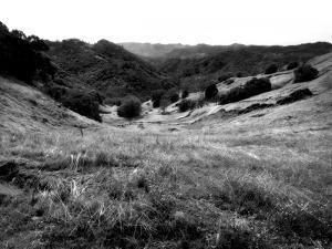 Valley Mono by John Gusky