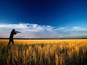 Mallee Farmer, Quail Shooting in Wheat Stubble - Mallee, Victoria, Australia by John Hay