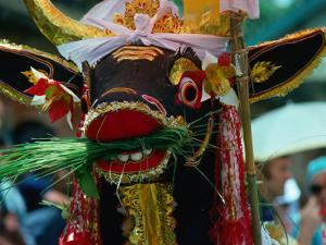Sacred Decorated Cremation Cow, Bali, Indonesia by John Hay