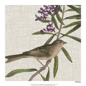 Avian Crop IX by John James Audubon