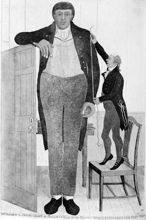 Mr O'Brien, the Irish Giant, the Tallest Man in the known World, 1803
