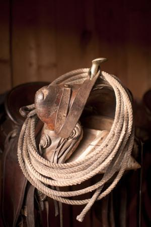 Usa, Colorado, Close-Up of Saddle with Rope