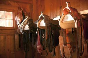 Usa, Colorado, Saddles in Barn by John Kelly