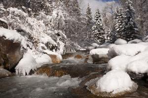 Usa, Colorado, Winter Landscape by John Kelly