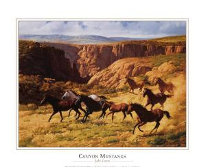 Canyon Mustangs by John Leone