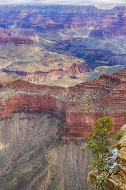 Arizona, Grand Canyon National Park, South Rim by John & Lisa Merrill