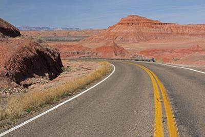 Arizona, Navajo County, Red Rock by John & Lisa Merrill
