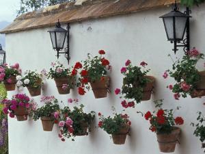 Geraniums along White Wall of Palacio de Mondragon, Ronda, Spain by John & Lisa Merrill
