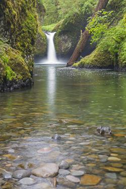 Oregon, Columbia River Gorge National Scenic Area, Punch Bowl Falls by John & Lisa Merrill