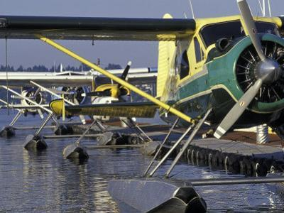 Seaplanes Docked on Lake Washington, Seattle, Washington, USA by John & Lisa Merrill