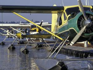 Seaplanes Docked on Lake Washington, Seattle, Washington, USA by John & Lisa Merrill