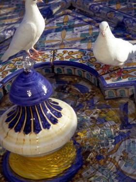 White Doves in Plaza Tiled Fountain, Sevilla, Spain by John & Lisa Merrill