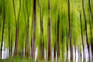 An Abstract Created by Intentional Camera Movement by John Lunt