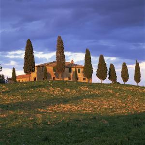 Farmhouse and Trees Near Pienza, Siena Province, Tuscany, Italy, Europe by John Miller